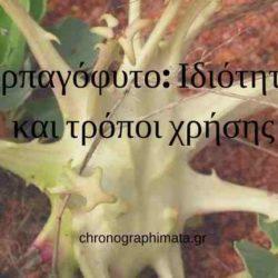 Αρπαγόφυτο
