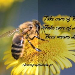 Take care of Bees