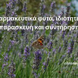 Φαρμακευτικά φυτά