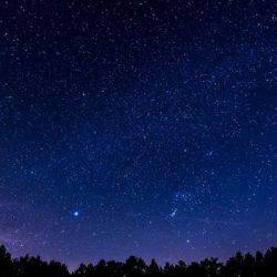 Ο κήπος των αστεριών1