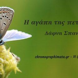 Η αγάπη της πεταλούδας