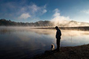 fog-2426131_640