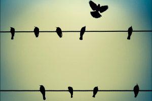 Σπάω τα δεσμά μου: Δραπετεύωντας από την φυλακή του αυτοπεριορισμού μας.