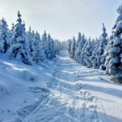winter-1384661_1920